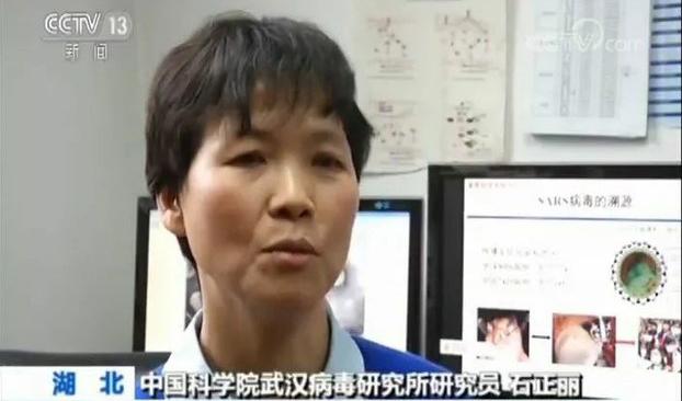 武汉病毒研究所研究员石正丽(视频截图)