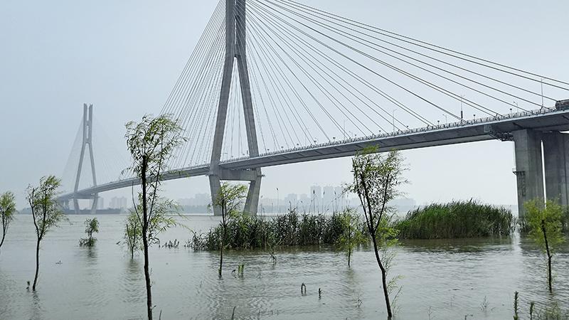 资料图片:2019年7月,长江安徽安庆段超过警戒水位。(Public Domain)