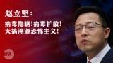 反击国际溯源压力   中国再次甩锅美国