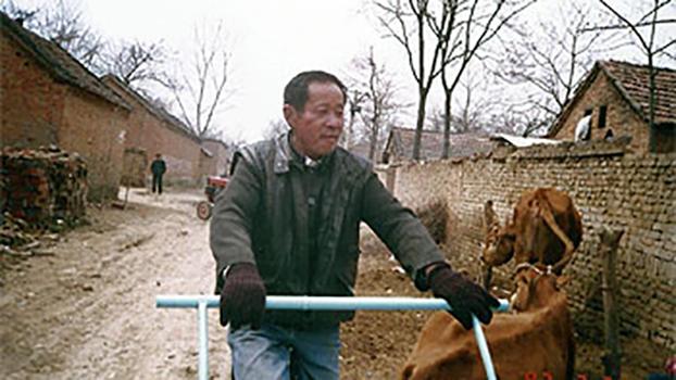 商水县西赵桥村1998年第二例死于艾滋病感染的病人(照片由王淑平提供)