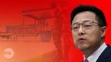 """近千万中国人联署要求调查美国实验室   专家说都是""""废话"""""""