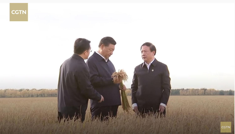 2018年9月25日,习近平在黑龙江七星农场了解粮食生产情况。(视频截图/CCTN)
