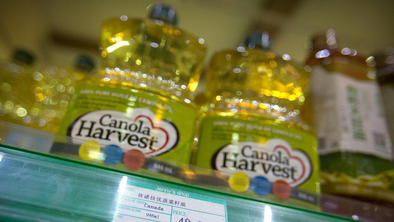 加拿大菜籽油( 美联社)
