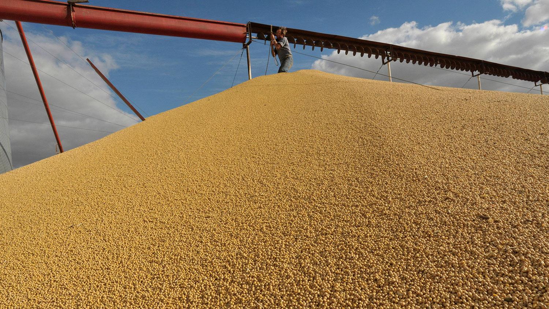 中国发布对美国货品课征报复性关税的豁免清单,但未包括大豆等主要农产品。(资料图/美联社)