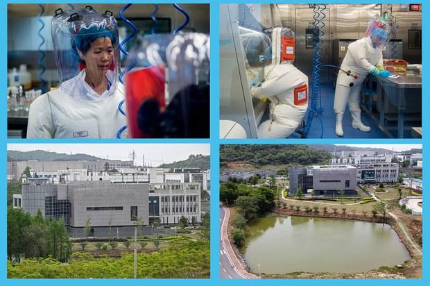 世卫专家团本周抵武汉调查   中国大量病毒资料突然消失