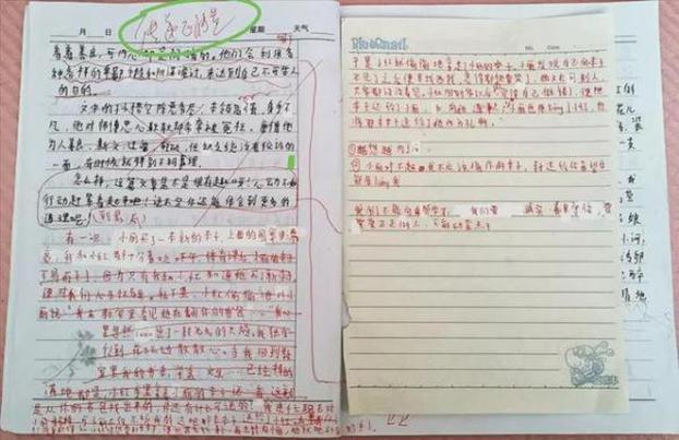 """自杀小学生的作文及涉事老师要求""""传递正能量""""的批语(图源:潇湘晨报)"""
