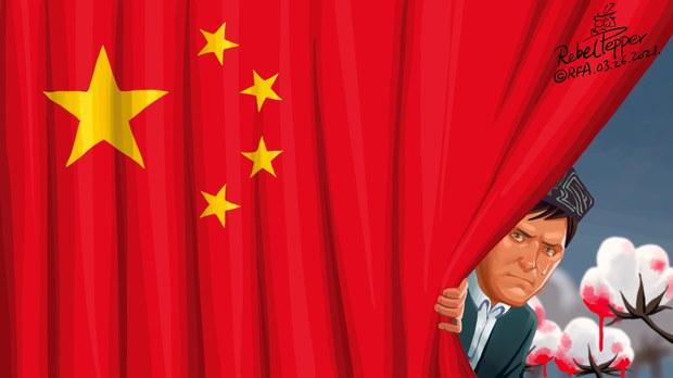 变态辣椒:H&M等拒绝新疆棉花 中国强烈反应(自由亚洲电台制图)