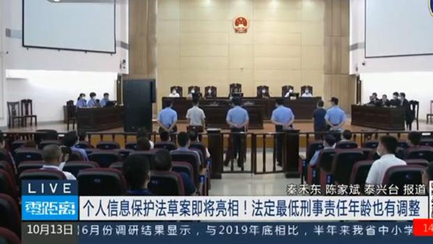 中国的个人信息保护法草案于2020年10月13日提交十三届全国人大常委会审议(视频截图)