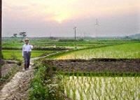 CHINA-ANHUI-FARMER-200.jpg