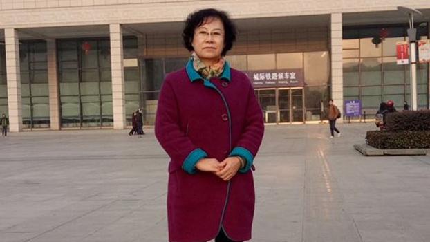 曾多次代理人权案件的中国律师李昱函被授予德法人权法治奖。(Public Domain)