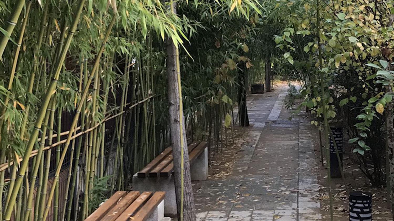 张忠顺是园林规划设计出身,烟台的房产由他亲自设计施工。(杨红霓独家提供,拍摄日期不详)