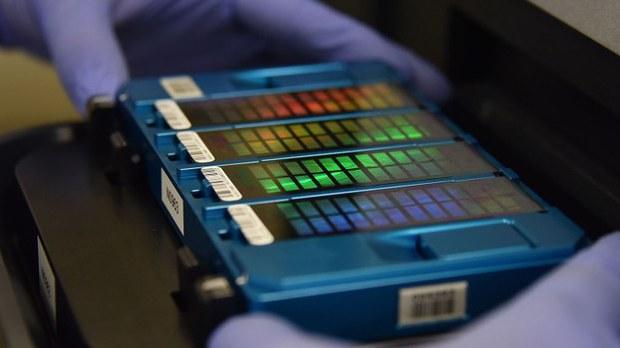 中国政府在各地采集公民DNA。图为北京一个实验室中的DNA检测试剂盒。(法新社)