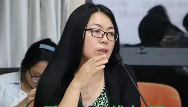 中国独立记者江雪(维权网)