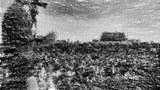 被數位化處理的照片,展現了王丹在1989年時手持擴音器、站在高處面向天安門廣場上的抗爭人潮的情形。