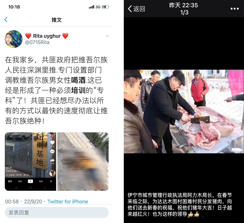 左图:社交平台推特也有网民发出库尔勒《喝酒培训基地》图片。(网络截图/乔龙提供); 右图:2019年初,新疆伊宁市城管局局长阿力木,向穆斯林分猪肉(微信截图/乔龙提供)