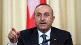 中土引渡条约争议  土耳其保证不会将维吾尔人遣返中国