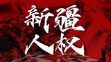 四十三国谴责中国打压维吾尔人   谁最有话语权?