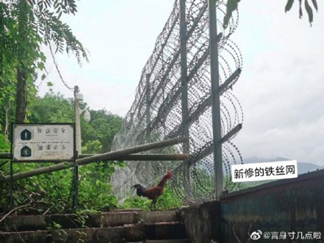 地处云南的中缅边境已建起长达一千公里的铁丝网隔离墙。(网络图片)