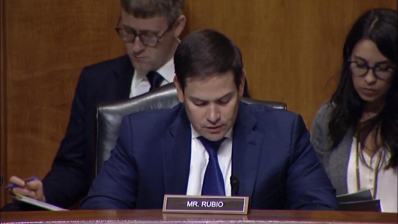 美国联邦参议员卢比奥在听证会上讲话(视频截图)