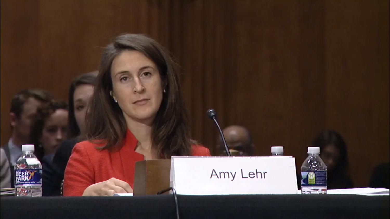 华盛顿智库战略与国际研究中心人权倡议主任艾米·K·勒尔(Amy K. Lehr)在听证会上讲话(视频截图)