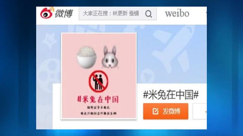 米兔在中国(视频截图)