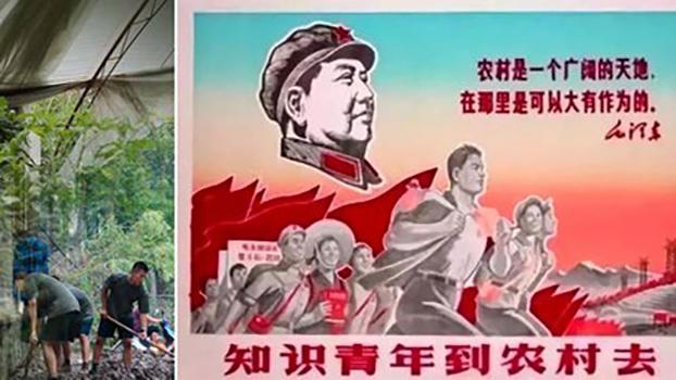 """组合图片:中国政府七部门发布通知,鼓励高校毕业生到城乡社区就业创业,而中国共青团提出要在2022年前动员上千万大中专学生下乡,参与农村发展建设。文革结束四十多年后,""""上山下乡""""要复活了吗?(法新社档案照)"""