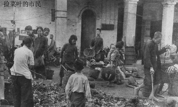 资料图片:1959年至1961年期间,中国经历大饥荒,图为饥民在捡菜叶。(百度百科)