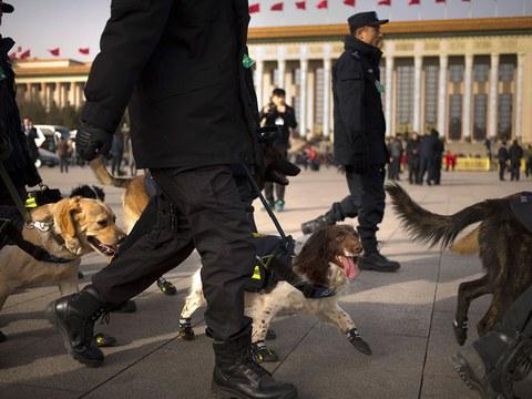 资料图片:2016年3月5日,中国两会期间,警察带着嗅探犬在人民大会堂附近。