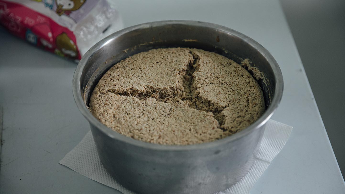 由台北市立动物园开发而出的人工穿山甲食物,俗称「穿山甲蛋糕」。(摄影/余志伟)