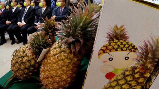中国指称台湾的凤梨有害虫,禁止进口,台湾政府拨款补助农民。