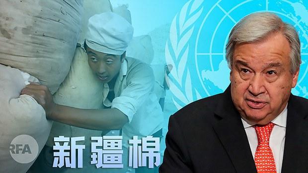 專欄 | 財經時時聽:新疆棉花事件持續發酵衝擊國際經貿格局