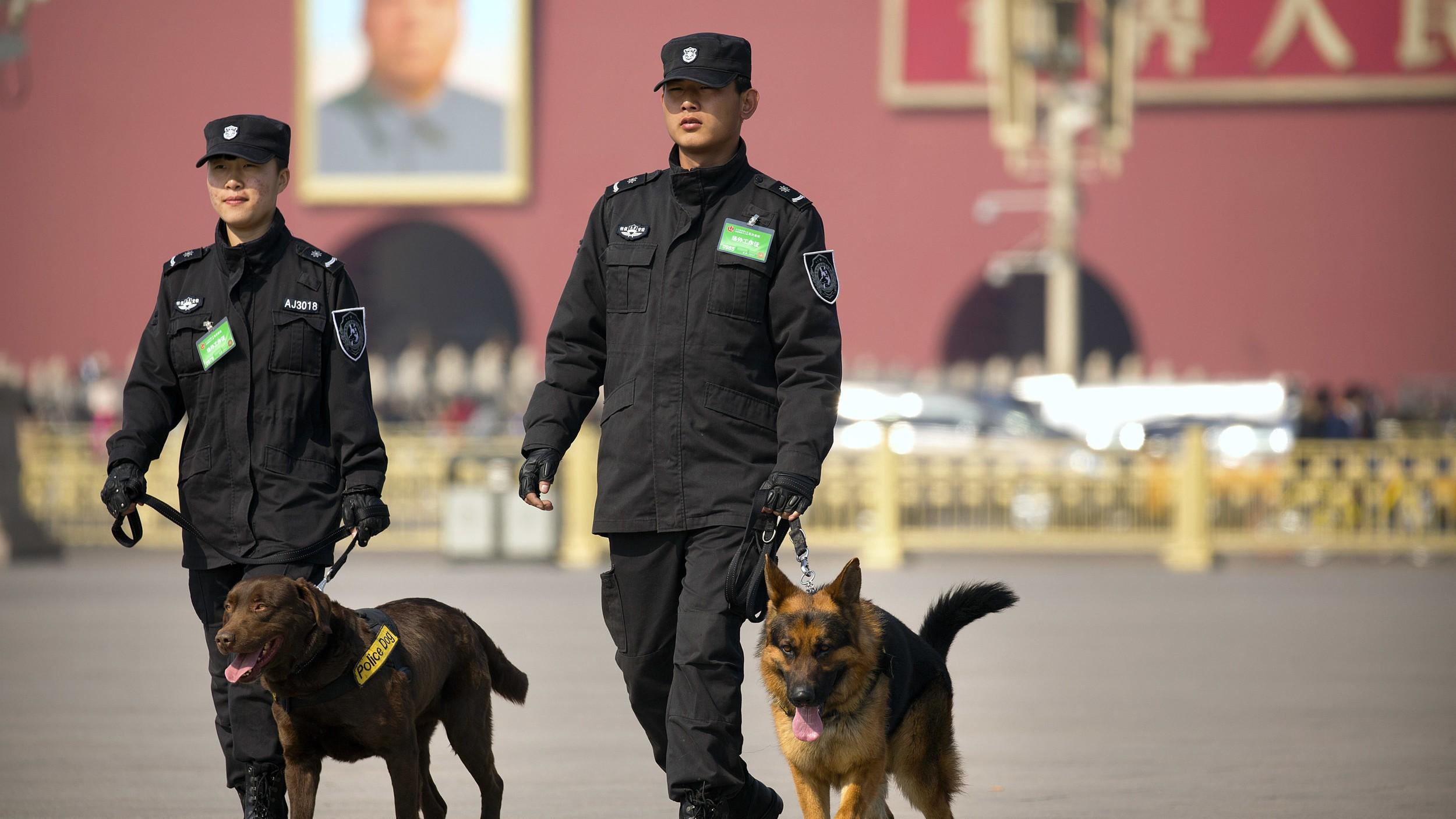 工作犬为党付出,却得不到中国对狗权的正视。(美联社)