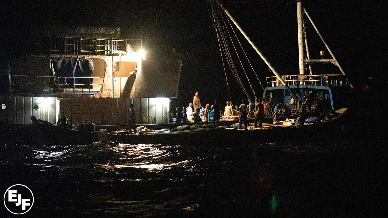 暗夜的迦纳海域,拖网渔船利用Saiko小船进行非法转载。(EJF提供)