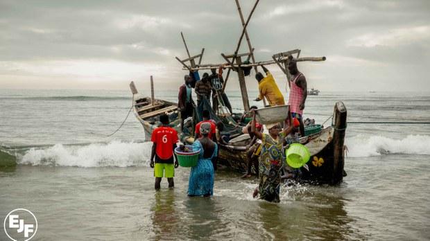 专栏   绿色情报员:非洲渔业的红色渗透 WTO挡得下中国的鲸吞蚕食?