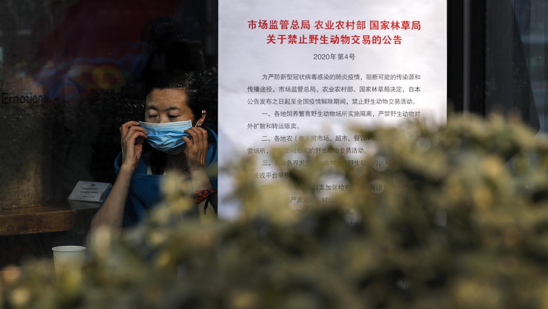 武汉肺炎爆发后,国家相关部委1月26日宣布禁止野生动物交易,直到疫情解除。(美联社)
