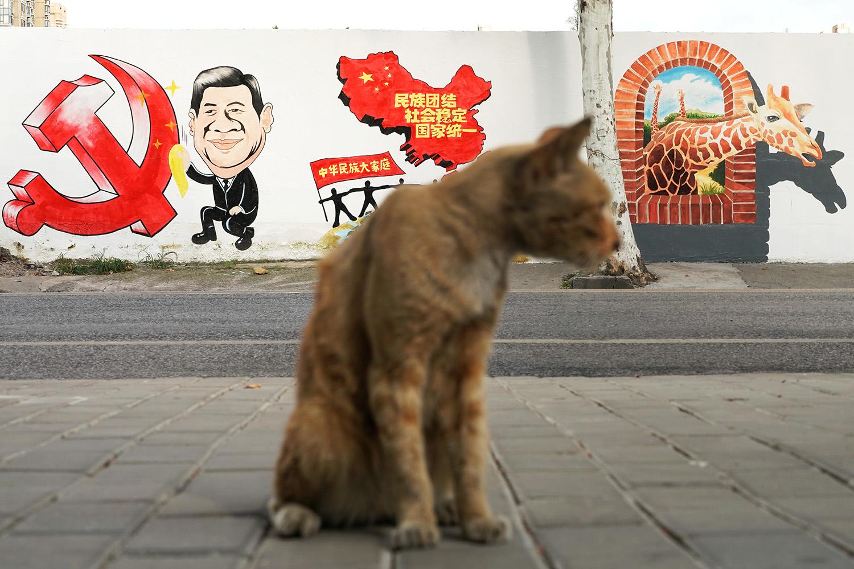 """流浪貓背後的""""社會穩定""""宣傳標語,諷刺點出被忽略的社會風暴。(路透社)"""