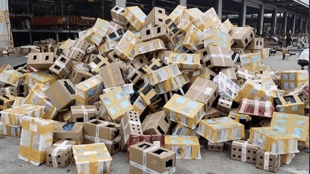 河南一處物流園區日前發生包裹運送寵物,造成上千只動物死亡。(翻攝自網絡)