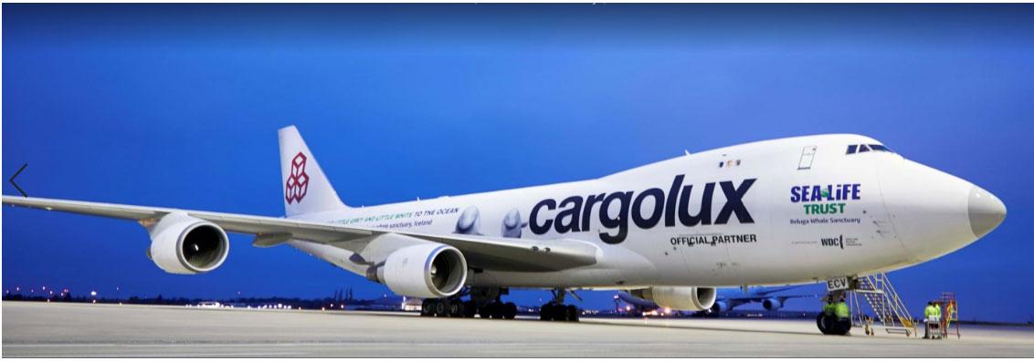 卢森堡货运航空的机身涂绘小灰和小白身影,担任白鲸运输专机。(翻摄自SEA LIFE Trust官网)