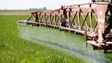 農民過度施肥,大量氮肥殘留土壤,衍生環境污染問題。