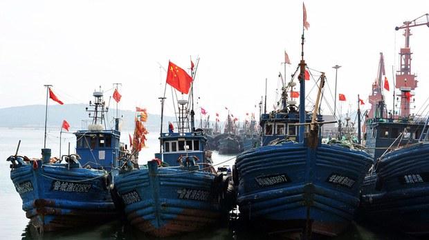 专栏   绿色情报员:伏季休渔 中国渔船四面埋伏