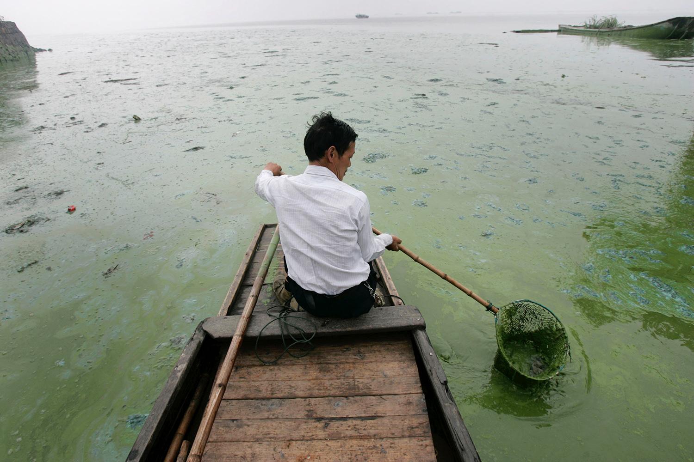 长江流域污染严重,水域优养化,不时发生赤潮灾害。(美联社)