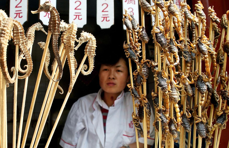 中国是全球最大的海马消费国,黑市目的地大多流向中国。(路透社)