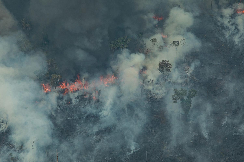 绿色和平在巴西境内的亚马逊大火区进行空拍,火舌吞噬地球之肺,放眼触目惊心。(绿色和平提供)