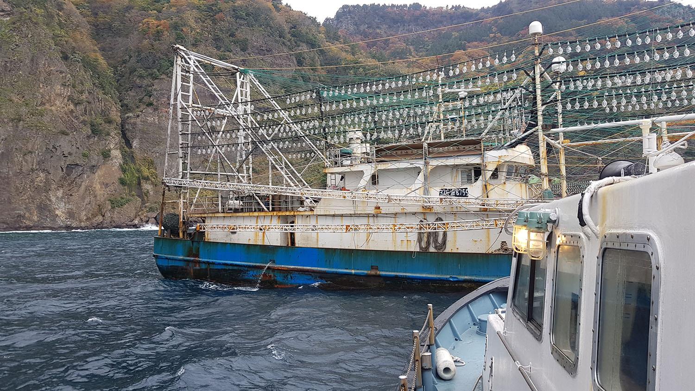 中国鱿钓船配备强力集鱼灯,捕捞能力远胜沿岸国的传统渔船。(南韩郁陵郡政府提供)