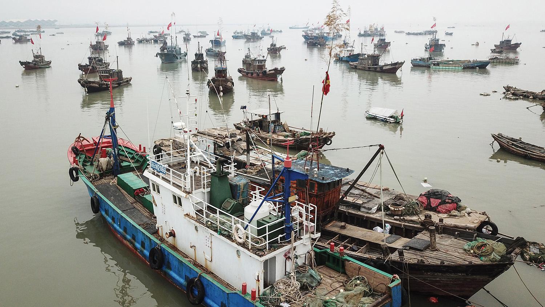中國漁船數量居全球之冠,漁具管理存在各種難題。(法新社)