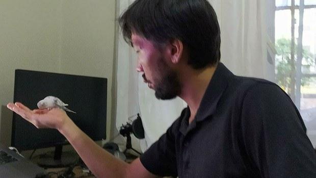 Маракәштә тутулған идрис һәсәнни қутулдуруш чақириқлири күчәймәктә