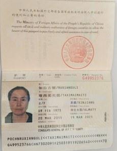 omurbek-eli-omer-bekali-ayali-pasport.jpg
