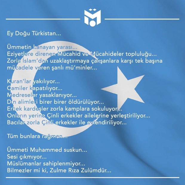 mesut-ozil-sherqiy-turkistan-twitter.jpg