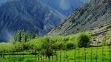 turkistan-tagh-bagh-305.png
