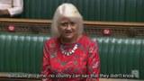 engliye-parlamenti-uyghur-mesilisi.jpg
